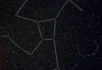Hercules (constellation). Comme il l'habitude d'appeler la constellation d'Hercule