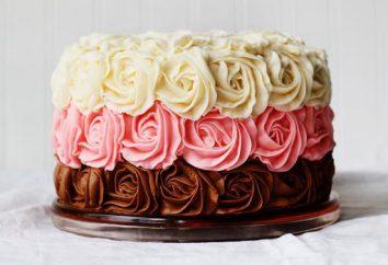 seringue décoration gâteau à la crème. Méthodes et techniques de gâteaux de décoration