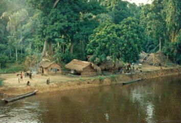 Was ist der Kongo? Land des Kongos. Kongo-Fluss