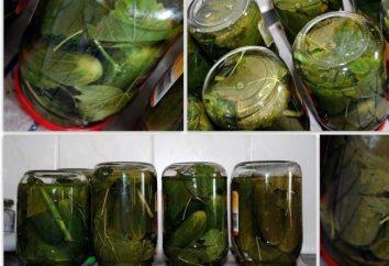 Conserva crocante pepino: receitas