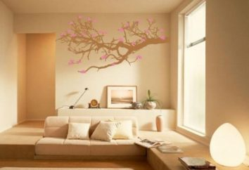 Welche Farbe der Wände in der Wohnung zu malen? Arten und Eigenschaften von Wandfarben