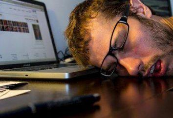 Co zrobić, gdy znudzony przy komputerze? Internet, aby Ci pomóc!