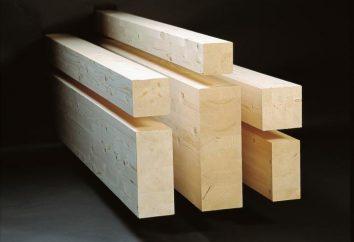 Maisons en rondins: avis des propriétaires. La construction de maisons de bois en placage stratifié