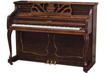 Aus welchem Baum kommt das Klavier? Was sind die Regeln der Wahl?