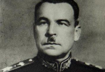 Marszałek Govorov Leonid Aleksandrowicz: biografia, nagrody