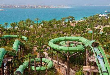 Hotéis nos Emirados Árabes Unidos para famílias com crianças: dicas para turistas