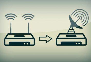 Cómo parpadea el router: instrucciones paso a paso. Cómo actualizar el router de TP-Link