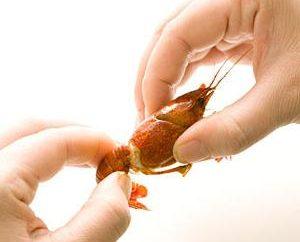 Subtelności etykiety tabeli: jak jeść kraby?