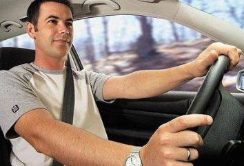 Die Arbeiten an seinem Auto: Optionen und Empfehlungen