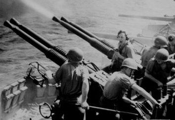 Najlepsze filmy o wojnie światowej