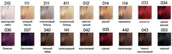 La palette de couleur de cheveux