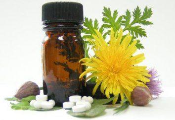Leki homeopatyczne – co to jest? Jak przyjmować leki homeopatyczne?
