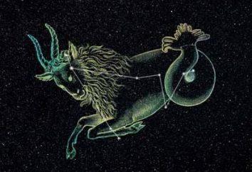 Capricorno: Zodiac elemento segno