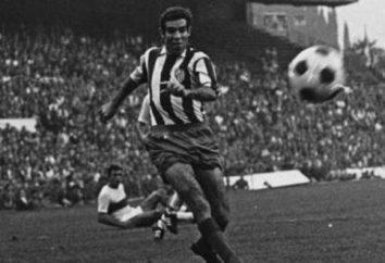 entrenador de fútbol Luis Aragones: biografía, trayectoria