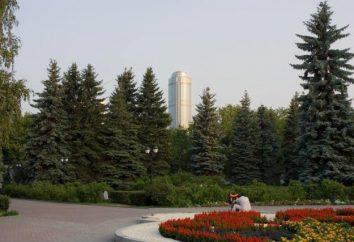 Botanical Garden (Ekaterinburg) è una ricca collezione di piante.