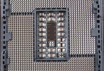 Socket 1155 Płyta główna LGA 1155: Cechy i opinie