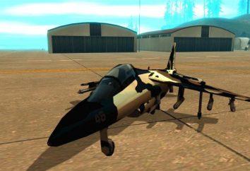 """Codes auf """"GTA: San Andreas"""" auf Kämpfer – wie man und wie zu kontrollieren?"""