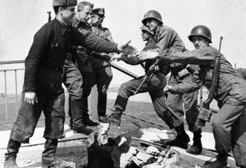 Faits intéressants au sujet de la Grande Guerre patriotique. faits peu connus sur la Grande Guerre patriotique