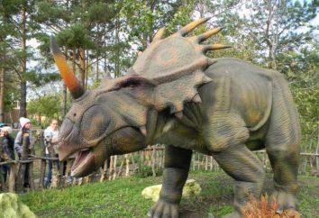 Dinopark (Magnitogorsk): Viagem ao mundo pré-histórico, acessível a todos