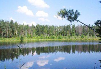 Nature Biélorussie – un écosystème relique du patrimoine unique