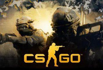 Perché non iniziare CS: GO? Punti chiave e la soluzione.