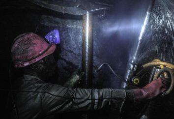 Journée Miner: un scénario de vacances