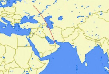 Wie nach Dubai von Moskau Direktflug und Transfers fliegen