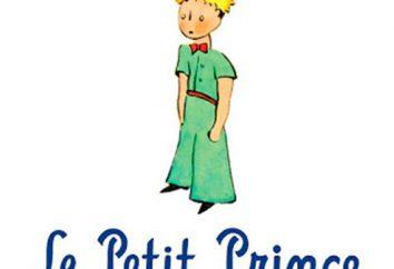 """Citazioni da """"Il piccolo principe"""" Exupery. L'analisi del prodotto 'Piccolo Principe'"""