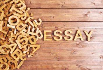 Cómo escribir un ensayo en Inglés? La estructura del plan y un ensayo de muestras