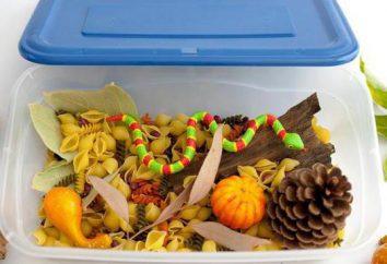 Toque na caixa para as crianças com suas próprias mãos: instruções passo a passo, conselhos e ideias interessantes