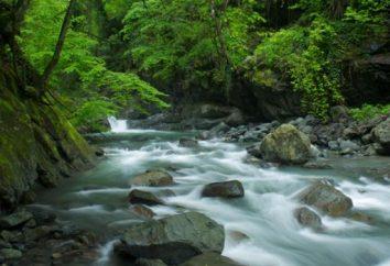Zaopatrzenie w wodę: strefy chronionej jak jest?