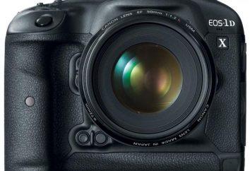 Canon 1DX: specifiche e recensioni. fotocamera reflex digitale professionale
