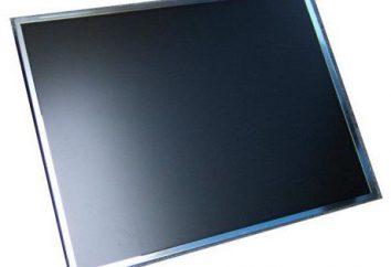 Die Reparatur und der Austausch des Laptop-Bildschirm