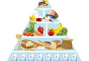 Piramide alimentare – base di nutrizione adeguata per ogni giorno