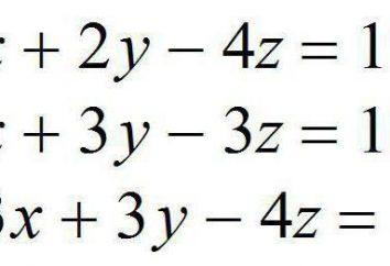 Un sistema de ecuaciones algebraicas lineales. sistema homogéneo de ecuaciones algebraicas lineales
