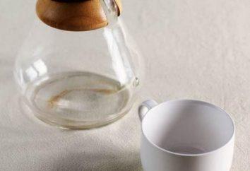 Um es einfach auszudrücken: der beste Weg, Kaffeeflecken von Geschirr zu entfernen