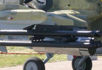 """missile guidato """"Whirl-1"""": le caratteristiche prestazionali. JSC """"preoccupazione"""" Kalashnikov """""""""""