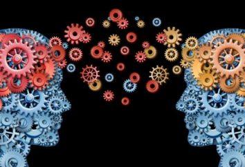 Główne kierunki psychologii: nauka, ale inny przedmiot