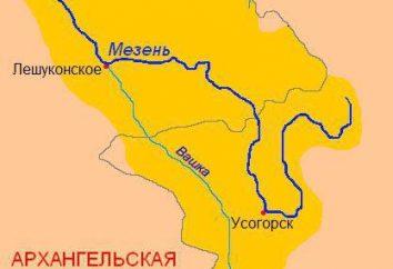 Dove si trova il fiume Mezen: sorgenti, affluenti, flora e fauna