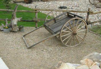 Wózki gospodarstwa domowego do transportu towarów własnymi rękami