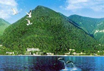 """Casa Vacanza """"Sunny"""" (Abkhazia) accoglie gli ospiti"""