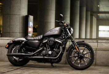 Harley Davidson Eisen 883: Eigenschaften