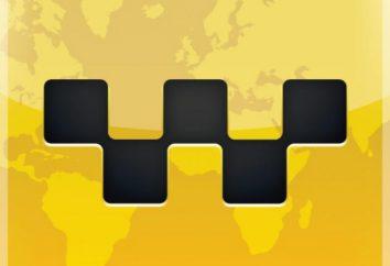 Welcher Browser für Ipad kann Safari ersetzen