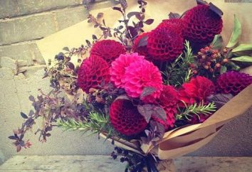 Comment emballer une fleur ou un bouquet avec leurs mains?