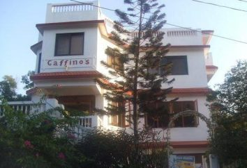 Gaffinos Beach Resort 2 * (Inde, Goa): commentaires et évaluations hotel