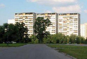 "Najlepsze hotele w Zelenograd ""Mikron"", ""Record"", ""Andreyevka"""