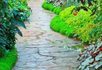 Ścieżki ogrodowe własnymi rękami z niskich kosztów materiałów pod ręką. Przykłady konstrukcji, wymiarów, zdjęcia