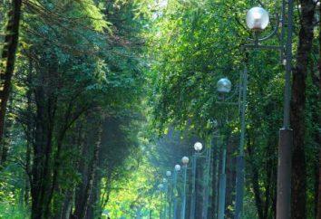 """Co to jest teren rekreacyjny """"Troparevo""""? Gdzie się zatrzymać, co robić w parku?"""