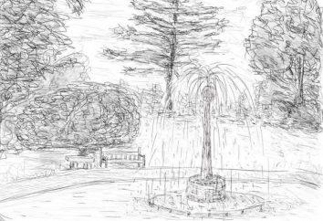 Como desenhar um lápis Park?