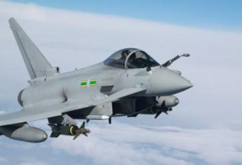 "Fighter ""Typhoon"": caratteristiche e foto"